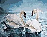 Boutiquespace Paint by Number DIY pintura acrílica de cisne en el agua para dibujo DIY Set de regalo sobre lienzo salón para niños adultos principiantes – 40 x 50 cm No enmarcado