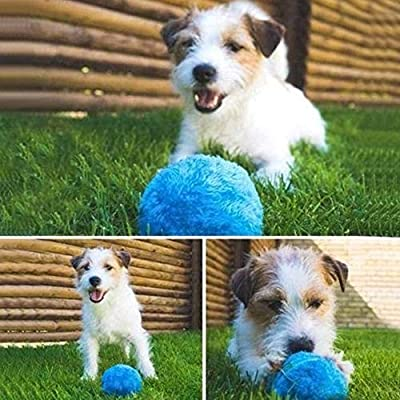 Mgsiko Dog Toy Ball Automatic Magic Roller Ball Chew Plush Floor Pet Toy Plastic Dog Ball with 4 Color Ball Cover for Dog Cat Pet Dog Cat, 8cm