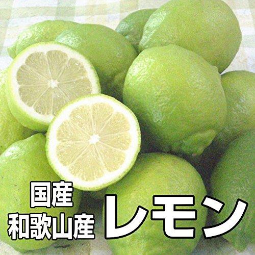 国産(和歌山県産)レモン/グリーンレモン 1kg 訳あり ノーワックス