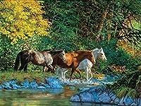 ダイヤモンドの絵画 ダイヤモンド絵画「動物の馬の花」フルスクエア/ラウンドドリル壁の装飾象眼細工の樹脂刺繡クラフトクロスステッチ