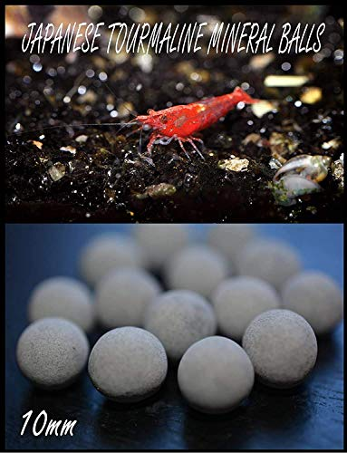 AQUATICBLENDEDFOODS (12) Japanese Tourmaline Mineral Balls for Shrimp Tanks & (20) Free Alder Cones & (1) 3' CHOLLA Wood