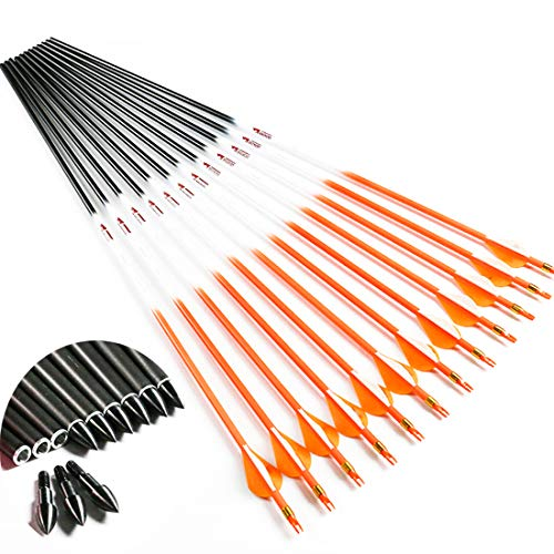 Linkboy Archery Carbon Arrows Hunting Practice Target Removable Points 30 inch Shaft Vanes Arrows for Youth Adults Compound Recurve Long Bow Spine 340 Orange Pack of 12