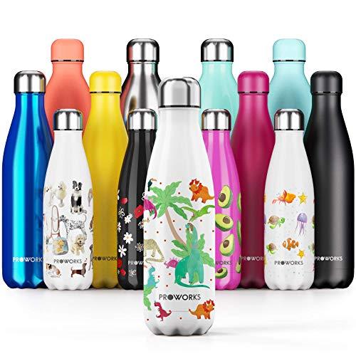 Proworks Edelstahl Trinkflasche | 24 Std. Kalt und 12 Std. Heiß - Vakuum Wasserflasche - Isolierflasche für Sport, Laufen, Fahrrad, Yoga und Camping - 500ml - Dinosaurier