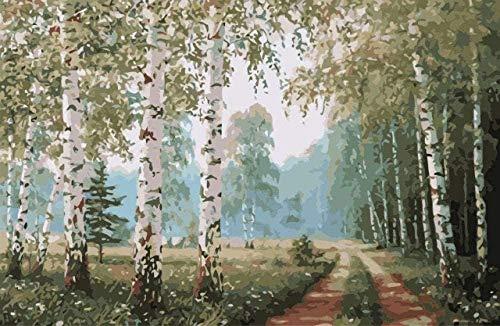 QIAOYUE Malen nach Zahlen für Birkenwald für Erwachsene und Kinder DIY-Malkit Anfänger Malerei Kunst Vorgedruckte Leinwand 40X50Cm (Rahmenlos)