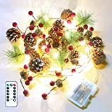 DricRoda Christmas Garland Lights,6.6FT 20LED Starry Fairy Light,Twinkle String Lamp for Xmas Tree Mantel Decor,Star Pinecone Woods Berries for Winter Holiday Indoor Outdoor Wall Decoration