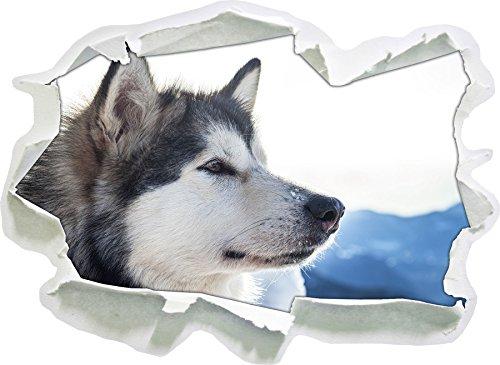 Husky Doux de la Taille de la Vignette Neige, de Mur 3D de Papier: 62x45 cm décoration Murale 3D Stickers muraux Stickers