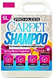 Best Carpet Shampoos - Pro-Kleen Carpet Cleaning Solution Upholstery Shampoo – Spring Review