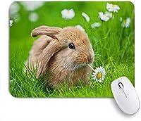 EILANNAマウスパッド 小さなウサギデイジー草原芝生フィールド ゲーミング オフィス最適 おしゃれ 防水 耐久性が良い 滑り止めゴム底 ゲーミングなど適用 用ノートブックコンピュータマウスマット