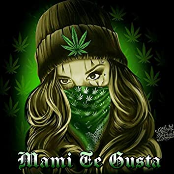 Mami Te Gusta (feat. Lil Anonimo)