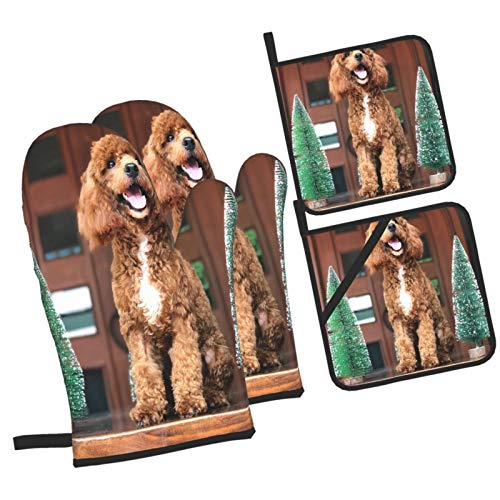 MYOLDSX Oven Mitts and Pot holders 4pcs Set,Red Toy Poodle Sitting Between Mini Heat Resistant Cooking Gloves for Kitchen,Baking,Grilling