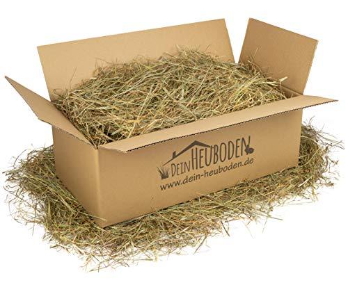 DeinHeuboden Premium Heu 2.Schnitt 2-4kg Wiesenheu Kaninchen Meerschweinchen, lose verpackt