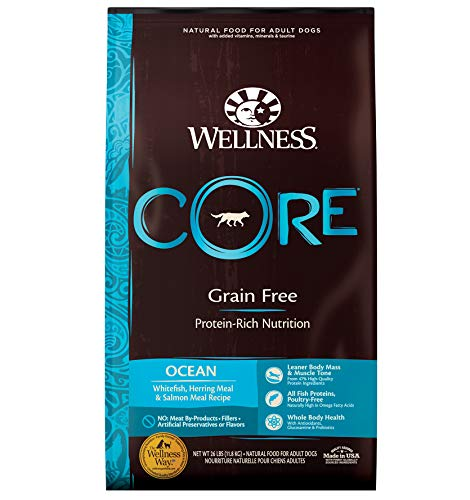 Wellness CORE 88414 Core Natural Grain-Free Dry Dog Food, Ocean Whitefish, Herring & Salmon, 26-Pound Bag