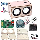 DIY Bluetooth Speaker Box Kit Electronic Sound Amplifier - Build Your Own Portable Wood Case Bluetooth Speaker with Sound - Science Experiment and STEM Learning for Kids, Teens and Adults