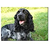 XJLAC DIY Large Dog Wooden Jigsaw Puzzles for Adults 1000 Pieces Cocker Spaniel Animal Dog pet Puppy Picture of Room Decor