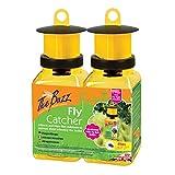STV internazionale The Buzz mosche con super efficace attrattivo per mosche–Confezione doppia