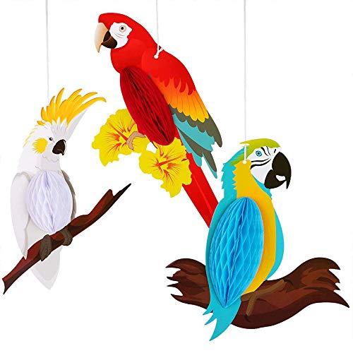 ANCLLO 6 piezas de panal de loro, diseño de pájaros tropicales, panal de abeja, decoración para decoración de verano, fiesta, hogar, clase, suministros