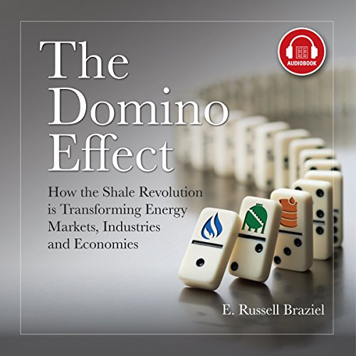 The Domino Effect audiobook cover art