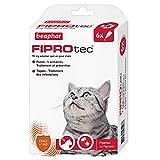 BEAPHAR - FIPROTEC 50 mg - Solution spot-on au Fipronil pour chats ( 1 kg) – Traite les infestations par les puces – Tue les tiques présentes sur le chat en 48 h – 6 pipettes de 0,5 ml