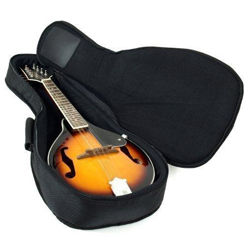 Our #6 Pick is the Hola! Music Heavy Duty Mandolin Gig Bag