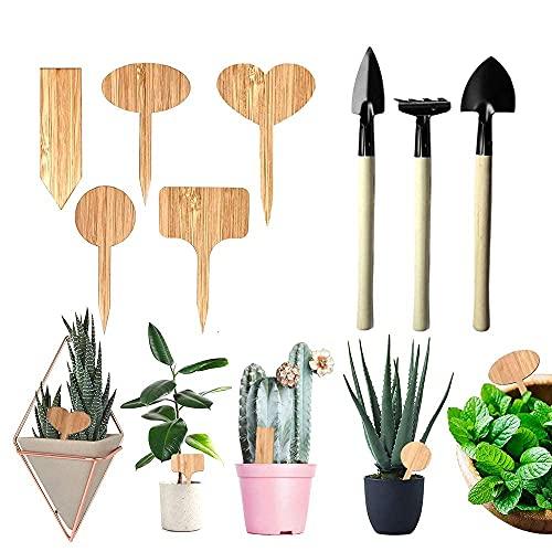 Lifreer Etichette per Piante 50PCS Etichette per Piante in Legno di bambù, 1 Confezione Set di Attrezzi per Kit da Giardino per Herb Garden Outdoor Indoor, Seme Erbe in Vaso Fiori Verdure
