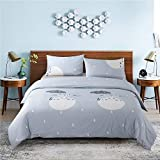 KFZ Magic Cat Print Twin Duvet Cover Set Bedding, Includes 1 66'x86' Duvet Cover (Without Duvet Insert) and 2 Pillow Cases, Cartoon Bed Set for Boys and Girls Teens