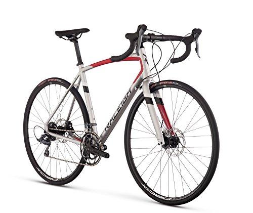 Raleigh Bikes Merit 2 Endurance Road Bike, Silver, 52cm/Small