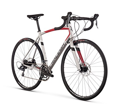 Raleigh Bikes Merit 2 Endurance Road Bike, Silver, 54cm/Medium