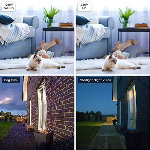 Caméra de surveillance Reolink Argus PT 1080P FHD sans fil 3