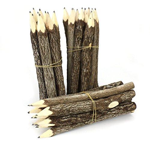 Thai Albero Ramo Ramoscello Pencil Bundle - Large Size - Solo nero - Multipack di 3 Bundle