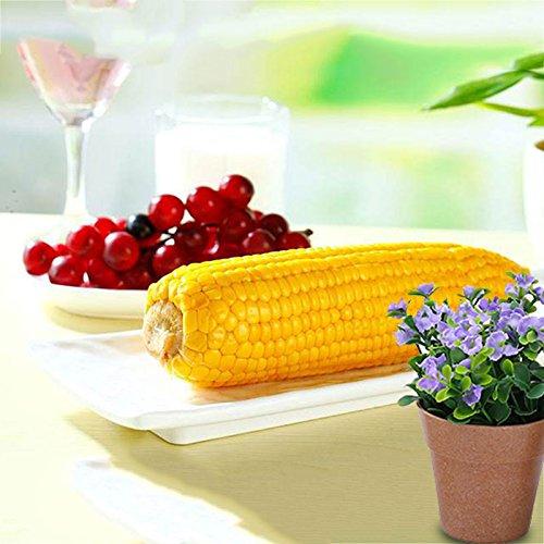 Rosepoem Le maïs sucré amélioré par 50g de graines de maïs a augmenté le maïs jaune de plantation de jardin