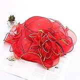 ZiWen Lu Spring - Sombrero para mujer (organza, con protecto