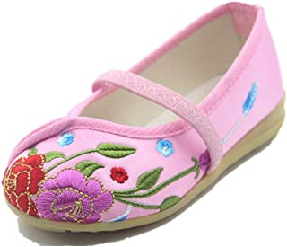 20bbdfb0ee5 Tianrui Crown Children Girl s Flower Embroidery Loafer Shoes Kid s Cute  Flat ...