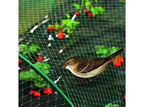 RM062 Filet anti-oiseaux 4x12 m vert