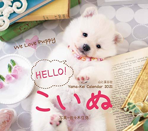 カレンダー2021 HELLO! こいぬ(月めくり・壁掛け・ミニ) (ヤマケイカレンダー2021)の詳細を見る