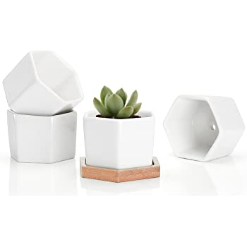 Succulent Plant Pots - 2.76 Inch Small Ceramic Hexagon Planter Containers for Flowers or Cactus with Drainage Hole and Bamboo Tray - White Set of 4