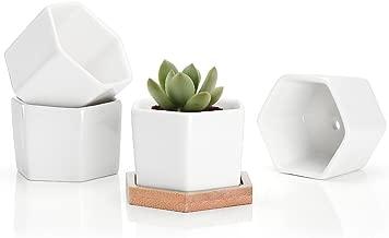 Best small pots plants Reviews