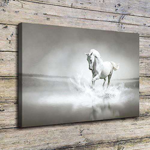 YB Canvas afdrukken Afbeeldingen muurkunst 1 stuk wit paard lopen in zee spatwater schilderij kantoor hotel dier poster wooncultuur 70cmx100cmx1pcs