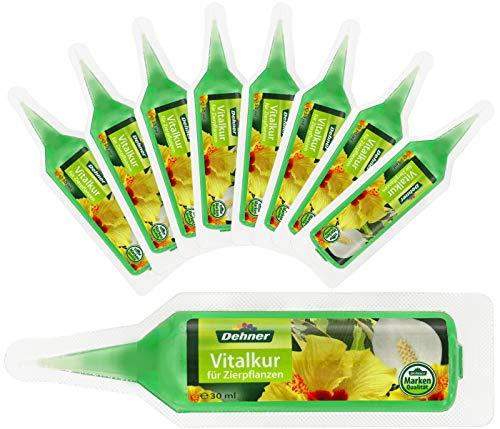 Dehner Zierpflanzen Vitalkur, flüssig, 10 Stück, je 30 ml