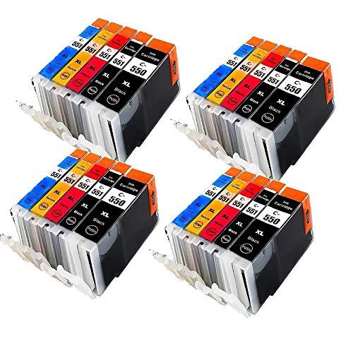 Alaskaprint 20 Set kompatible Druckerpatronen als Ersatz für Canon PGI550 XL CLI551 XL PGI550xl CLI551xl für Pixma MX925 MX 925 MX725 IP7250 MG5650 IX6850 I8750 MX-725 Patronen