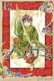 ノラガミ(12) (月刊少年マガジンコミックス)