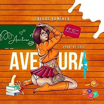 Aventura (Edicion Especial)