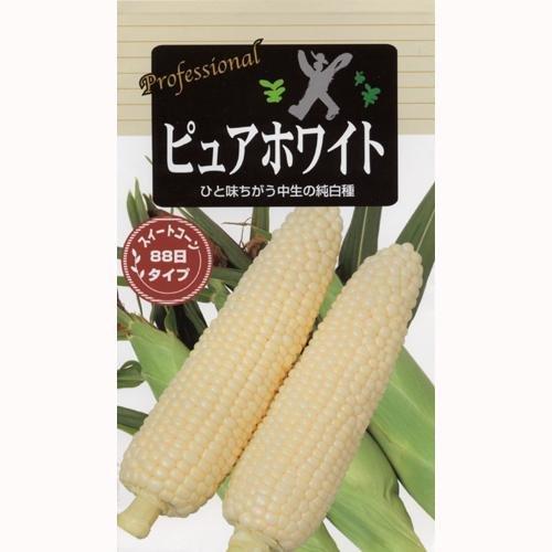トウモロコシ種 【 ピュアホワイト (とうもろこしの種) 小袋 】 ガーデニング 家庭菜園におすすめの 野菜種