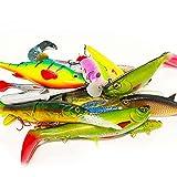 Jackson Juego de pesca profesional XXL de 6 a 18 cm, cebo artificial para trucha hasta lucio, 25 unidades