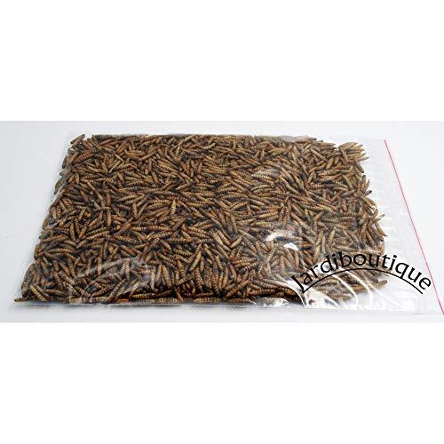 jardiboutique - 750 g Nourriture pour Animaux à Base d'insectes, pour Oiseaux, Poule, lézard, Poisson. - ENT-VR-SOUF-750