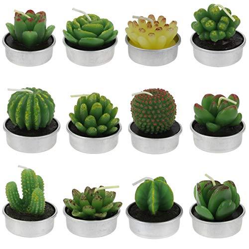 Hysagtek 12 velas de té con forma de cactus, lindas mini plantas suculentas, para cumpleaños, Navidad, festival, fiesta, boda, spa, decoración del hogar, 12 estilos