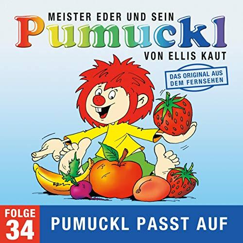 Pumuckl passt auf. Das Original aus dem Fernsehen Titelbild