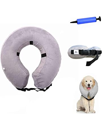 Amazon Co Uk Recovery Collars For Dogs