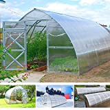 gazebiprofessionali.com Invernadero túnel de 3 x 6 m de policarbonato de 6 mm de Serrashop, invernaderos modulables para huertos, jardines, plantas viveros