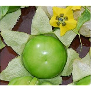 JustSeed - Vegetable - Tomatillo - Verde - 60 Seeds