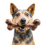 Pet Qwerks Extreme Dinosaur BarkBone Steak Flavor - Tough Chew Toy for Extremely Aggressive Power Chewers, Durable Indestructible Bone | Made in USA Premium Nylon - XXLarge for Medium Dogs